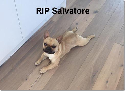 Salvatore1